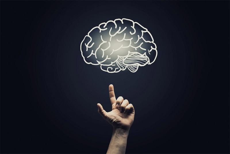 brain psychology - بازاریابی عصبی و نقش آن در تبلیغات