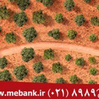 طراحی بیلبورد بانک مهر اقتصاد 01 200x200 - طراحی بیلبورد بانک مهر اقتصاد